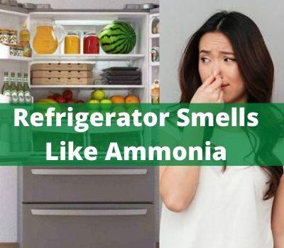 Refrigerator Smells Like Ammonia
